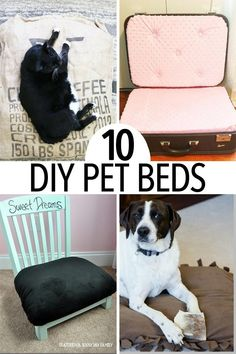 Adorable DIY pet bed projects for dogs and cats of all sizes! No matter what your style you'll find a dog bed or cat bed your pet will love. Includes no sew dog beds, upcycle projects, easy cat beds, and so much more. #AndSoToBed