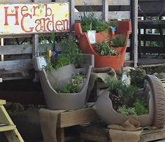 Herb Gardens in the Acorn Pot, Beige Broken Pot and Terra Cotta Broken Pot