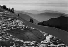 ADAMS, ANSEL (1902-1984) 'From Hurricane Hill, Olympic National Park, Washington.'