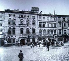 Edelmannův palác na Horním náměstí - foto je   1870 ? Louvre, Bright, Building, Travel, Buildings, Viajes, Traveling, Tourism, Louvre Doors