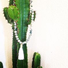 © UN JE NE SAIS QUOI www.unjenesaisquoi.ch Cactus Plants, Jewellery, Bijoux, Jewels, Jewelry Shop, Schmuck, Cacti, Jewelery