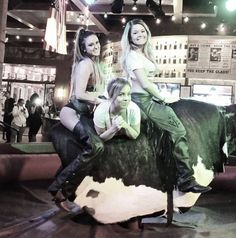 Take a walk on the wild side! Ride the bull tonight at PBR Bar & Grill!
