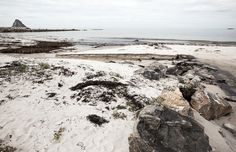 Places // Norway - Terhi Ylimäinen Photography Helsinki, Finland, Norway, Documentaries, Landscapes, Portrait, Beach, Places, Water