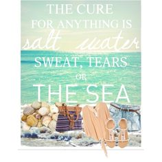 Inspiration of the day: Seashells, created by conversecutie10 on Polyvore