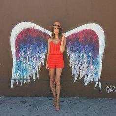 jumpers  + wings