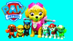 17 Best Paw Patrol Episode Names Images Paw Patrol