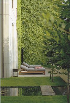 I would like to try and achieve this '3 story' ivy Green Wall in the backyard to give a sense of privacy and hide the views of unkept neighboring backyards. This property currently has a stone wall and a chain link fence that lend themselves to achieving a design like this.