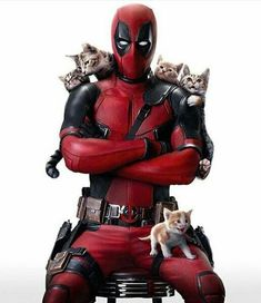I want this to be Deadpool two. Just Deadpool chasing a bunch of cats and trying not to lose/kill them. I miss these days. Deadpool Y Spiderman, Deadpool Love, Deadpool Funny, Deadpool 2016, Dead Deadpool, Deadpool Symbol, Deadpool Stuff, Deadpool Wallpaper, Marvel Wallpaper