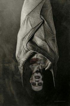 #Nosferatu #TheVampyre