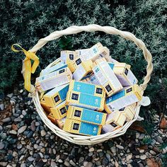A basket full of . With or without color, or choose the one that meets your needs Facing The Sun, Sun Care, Our Body, Sun Protection, Face Care, Basket, Cosmetics, City, Green