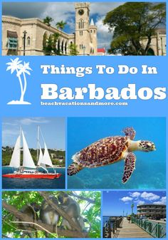 Top things to do in Barbados & Bridgetown include - Scuba Diving, Snorkeling, Atlantis Submarine, cruises, tours in Barbados and other activities Barbados Honeymoon, Barbados Resorts, Barbados Travel, Honeymoon Destinations, Cruise Travel, Cruise Vacation, Dream Vacations, Vacation Spots, Vacation Travel