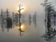 South Carolina, USA
