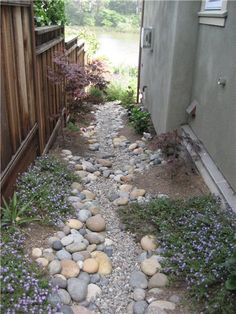 Swale along the side of house - 1 point on this site - don't use rock swale if machinery (aka lawn mower) going over it http://www.santacruz.watersavingplants.com/Garden-Resources/Swales.php
