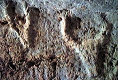 Alghero,domus de janas Anghelu Ruju. Simboli zoomorfi all'interno di una tomba