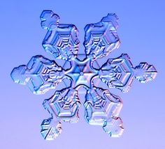 Snowflakes under the microscope..Credit: Kenneth Libbrecht/Barcroft Media A double plate snowflake