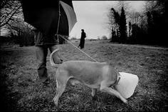 SALE TEMPS POUR UN DIMANCHE | Maurine Tric - Photographie
