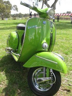 Australian National Scooter Rally 2011 by Andy Gentry, via Flickr