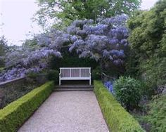 Wisteria - the bench pulls the eye forward and almost forces you to look at the Wisteria.  And the boxwood acts as a guide as you move along the path.  Lovely!