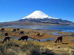 Parque Nacional Lauca e vulcão Parinacota, Chile. Autor mtchm. Licensed under the Creative Commons Attribution-Share Alike