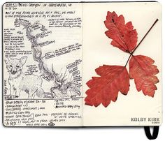 Hiking journal - I totally can't draw that well but it'd be nice to keep a journal and little keepsakes from the trail