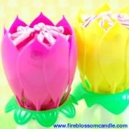 Fairy Tale - 1 Pink & 1 Yellow Fire Blossom  www.fireblossomcandle.com  A unique cake candle for your birthday party