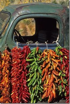 Colorful chile ristras hang from the window of an old pickup at Elizabeth Berry's ranch near the village of Abiquiu in northern New Mexico http://www.pagosaspringsluxproperties.com