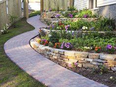 terraced wall plants