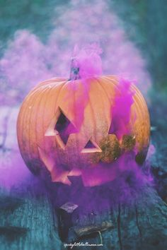 Get a sneak peek at what's coming to Spooky Little Halloween this year! - Spooky Little Halloween Fröhliches Halloween, Purple Halloween, Halloween Images, Halloween Costumes For Girls, Spirit Halloween, Diy Costumes, Halloween Decorations, Halloween Inspo, Outdoor Halloween