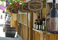 Bemutatkozik: a Tisza Expo Rendezvényszolgáltató Kft. Hungarian Cuisine, Hungarian Recipes, Hungary, Wines, Culture