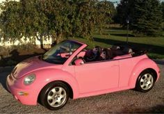 Pink bug I WANT THIS