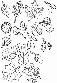 coloring page Trees and leaves on Kids-n-Fun. Coloring pages of Trees and leaves on Kids-n-Fun. More than coloring pages. At Kids-n-Fun you will always find the nicest coloring pages first! Autumn Crafts, Fall Crafts For Kids, Diy And Crafts, Leaf Coloring, Colouring Pages, Autumn Doodles, Bujo Doodles, Bordados E Cia, Autumn Activities