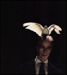 Sam Taylor Johnson.  Ascension (Still) 2006.