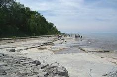 Fossil hunting in Craigleith Provincial Park, Ontario Parks Canada, O Canada, Ontario Provincial Parks, Ontario Parks, Fossil Hunting, Great Lakes, Landscape Photos, Natural World, Dream Vacations
