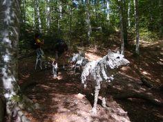 wolf artesella