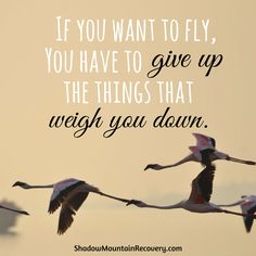 """""""If you want to fly, you have to give up the things that weigh you down.""""  #RecoveryIsPossible #ShadowMountainRecovery #Colorado #NewMexico #Utah #Rehab #Recovery #Aspen #Cascade #ColoradoSprings #Denver #Albuquerque #Taos #StGeorge #rehabilitation #addition #drugs #alcohol #inspiration #quote #detox #Sober #Sobriety"""