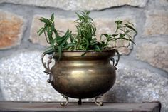Vintage Brass Footed Planter from India with Ornate by OneDecember, $21.00