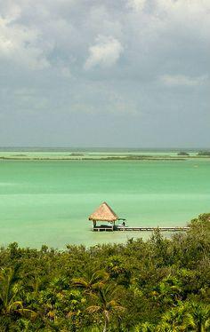 see its huge looks like ocean but inside like huge lake no big waves   i scuva dived there   Sian Ka'an Biosphere Reserve   Quintana Roo, Mexico.
