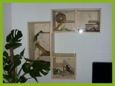 3x Betsy's Buddel Box und 1x Kalle's Kletter Kiste