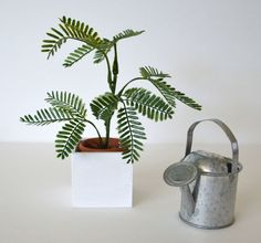 1:6 scale_miniature plant in clay pot and wooden planter_dollhouse plant_Blythe_Fashion Royalty_Momoko_BJD_doll furniture diorama_playscale. by FashionDollStore on Etsy https://www.etsy.com/listing/278656750/16-scaleminiature-plant-in-clay-pot-and