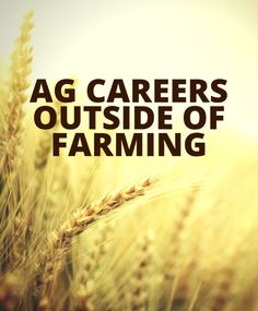 Now, agriculture science doesn't mean just farming. Here are more career options an agriculture education can get you.