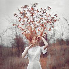 tree's dreams by Anna1Anna.deviantart.com on @deviantART  #autumn