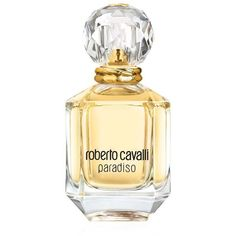 Roberto Cavalli Paradiso (EDP, 30ml - 75ml) (€65) ❤ liked on Polyvore featuring beauty products, fragrance, perfume, beauty, eau de parfum perfume, perfume fragrances, roberto cavalli, eau de perfume and roberto cavalli fragrance