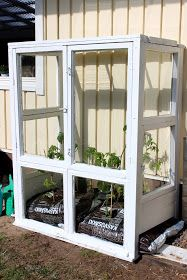 Cool Landscapes, Shutters, Shed, Outdoor Structures, Windows, Doors, Plants, Garden Ideas, Trees