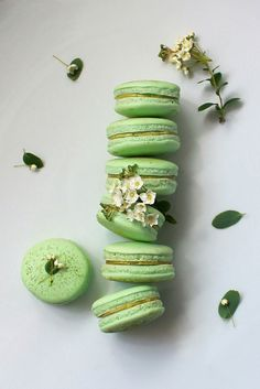 Matcha Green Tea Macarons - Oh Sweet Day!