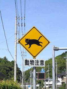 動物注意 / Animal care sign