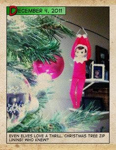 "Our ""thrill seeker"" zip lining. Elf on the Shelf."