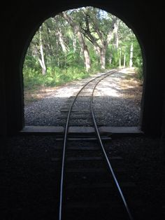 View from the tunnel on the brackenridge park train. This park encompasses almost my entire childhood and I still love it.