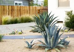 Search this significant graphics as well as look into today facts and techniques on Landscaping Ideas for Front Yard Landscape Bricks, Landscape Design, Garden Design, House Design, Small Yard Landscaping, Landscaping Ideas, Backyard Ideas, Garden Ideas, Pergola Pictures