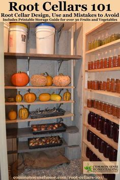 Root Cellars - Learn how to build a root cellar, what to store and how to store it. Includes printable storage guide for over 30 fruits and veggies.