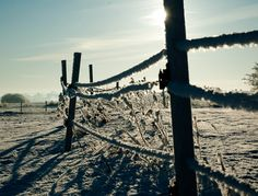 #Nature #landscape #snow